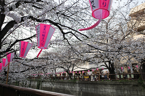 目黒川、東京都