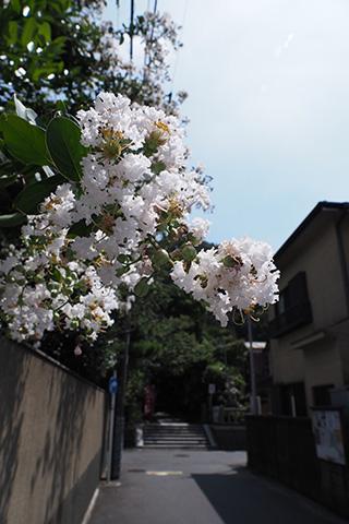 2019.08.25. Oomachi