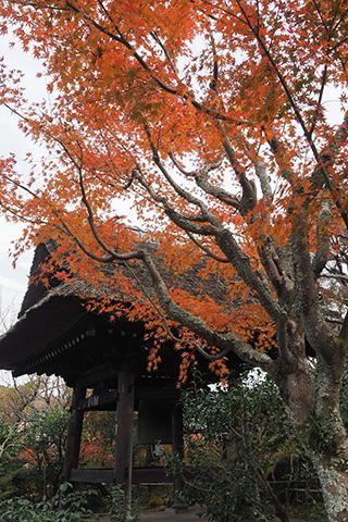 2019.12.11. Tokeiji
