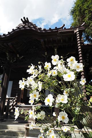 2020.10.21. Daigyoji
